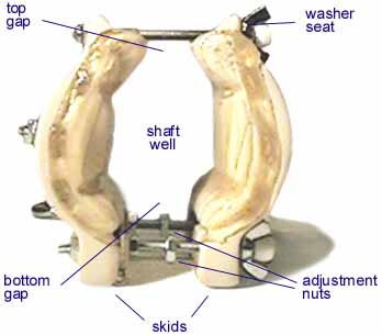 Penis hanging results